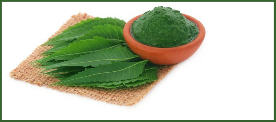 Neem for pimples