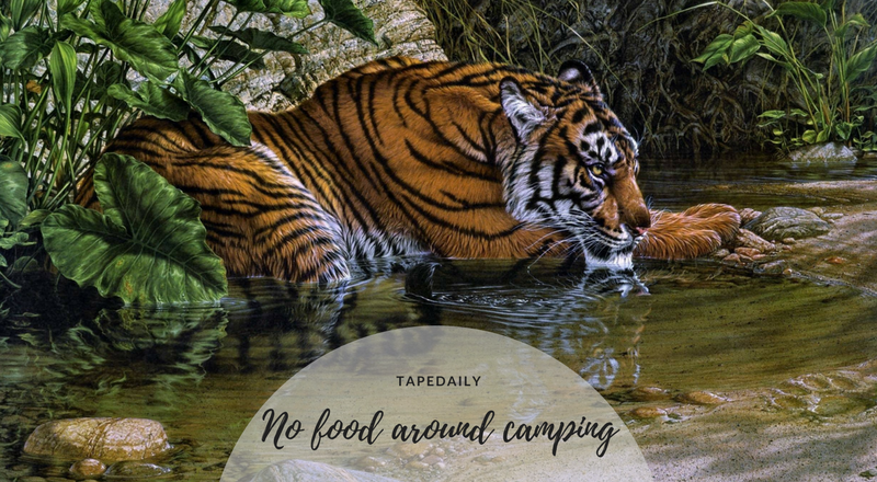 no food around camping area
