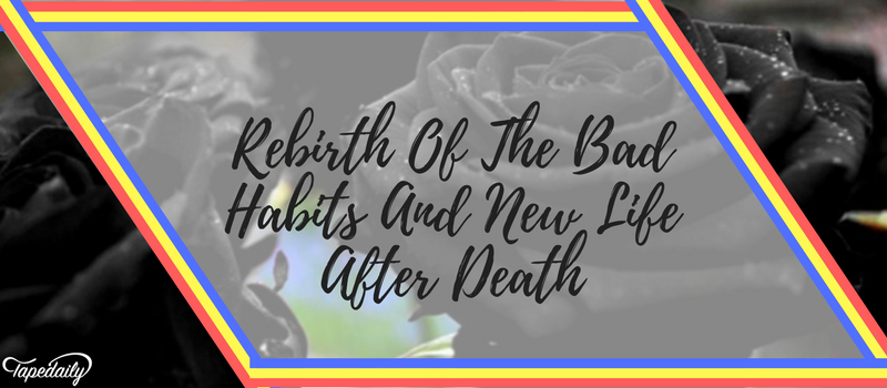 Rebirth Of The Bad Habits And New Life After Death