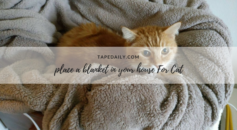 place a blanket
