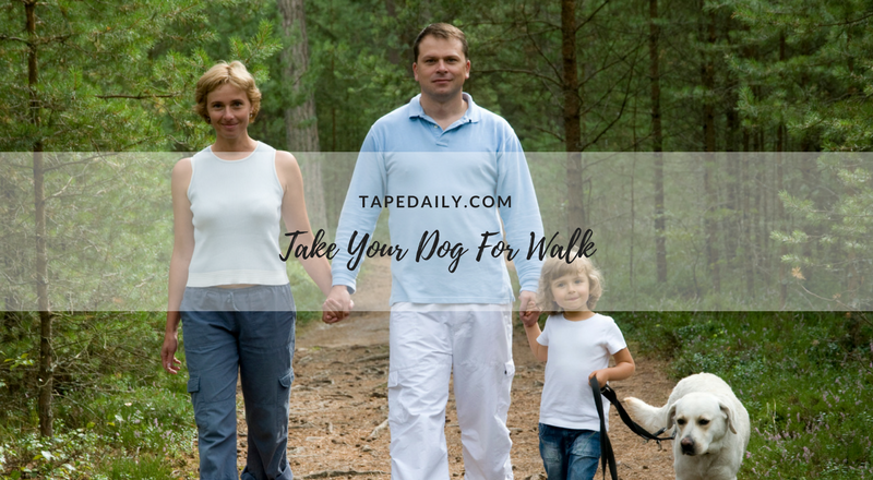 take your dog for walk