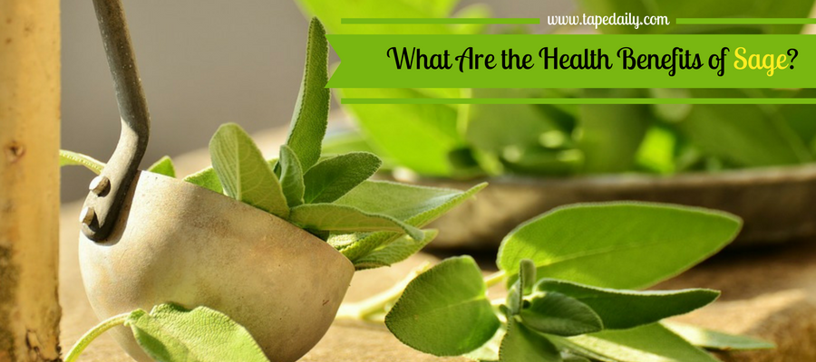 What Are the Health Benefits of Sage