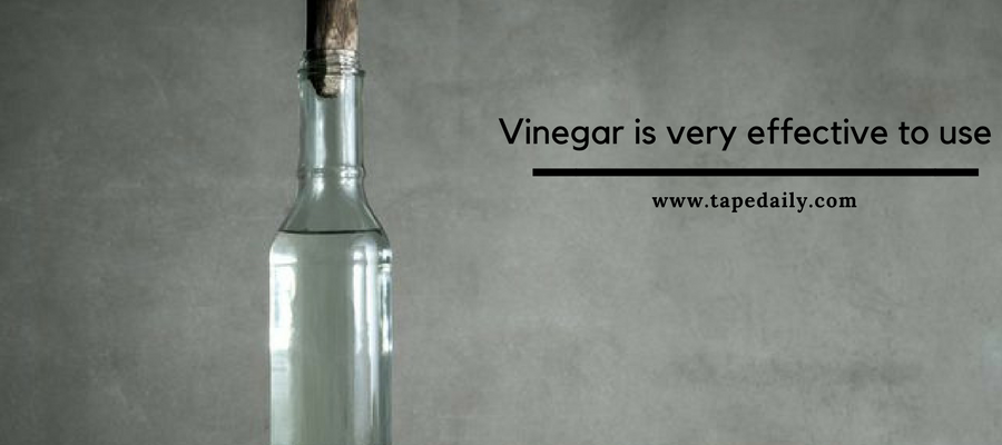 vinegar is very effective to use