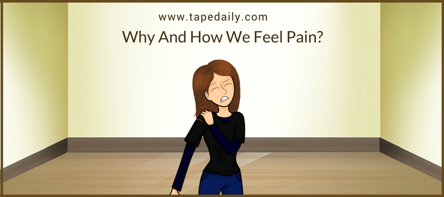 How We Feel Pain