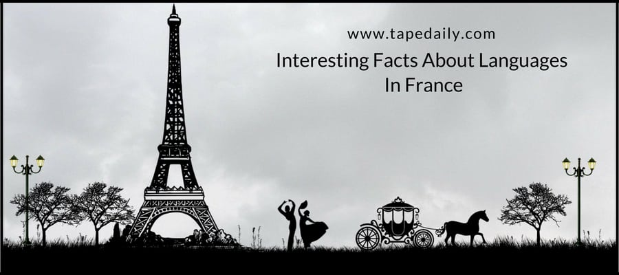 Interesting Facts About Languages In France