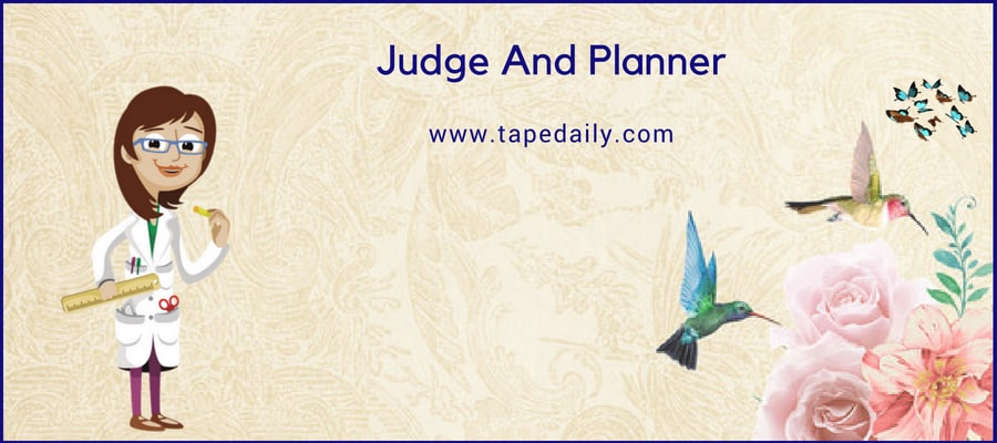 Judge And Planner