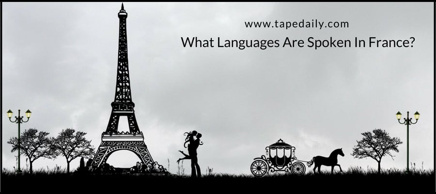 Languages Are Spoken In France