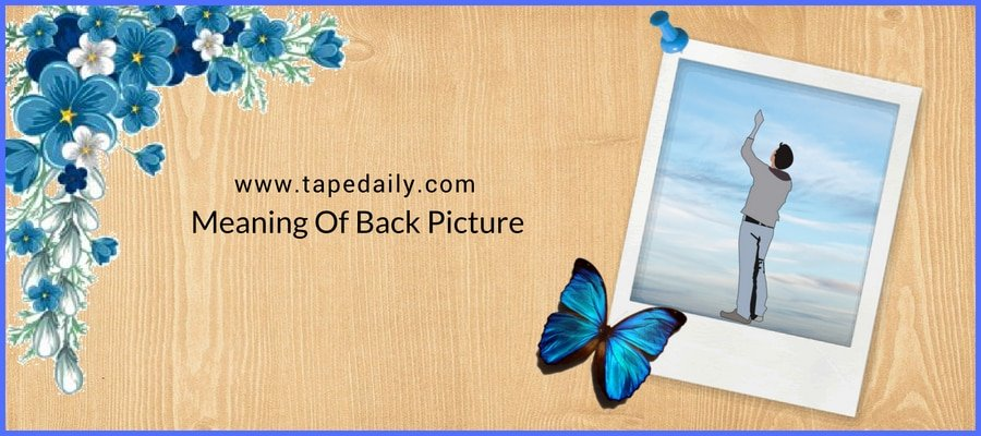 Meaning Of Back Picture