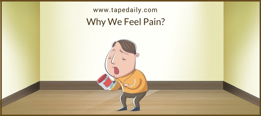 Why We Feel Pain