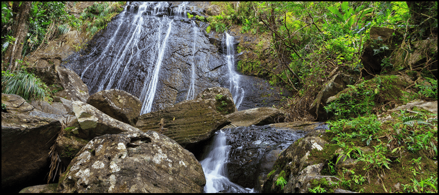 Where To Go Hiking In Puerto Rico?