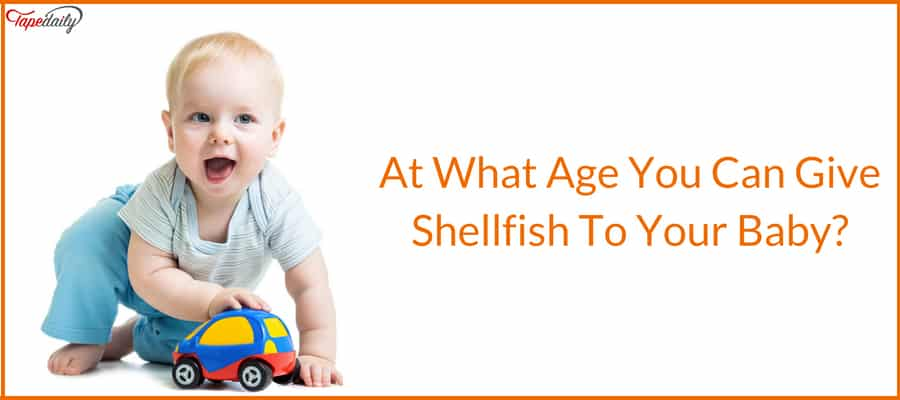 At What Age You Can Give Shellfish To Your Baby