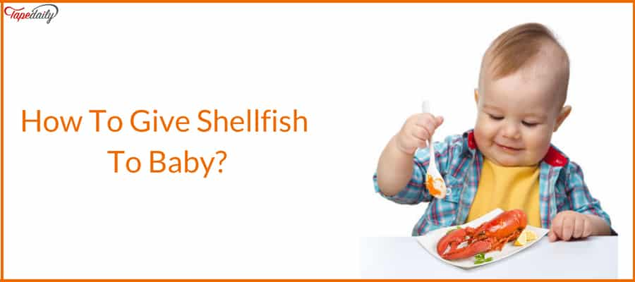 How To Give Shellfish To Baby