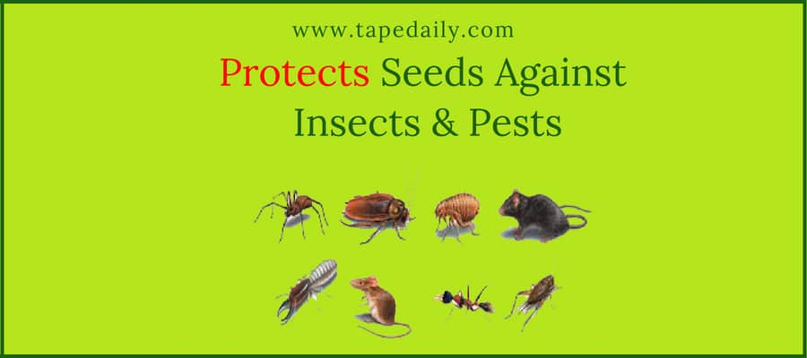 Protects Seeds Against Insects & Pests