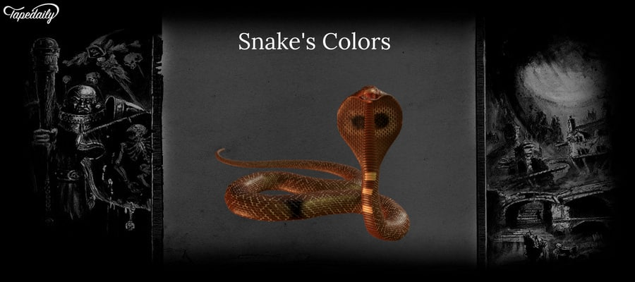 Snake's Colors