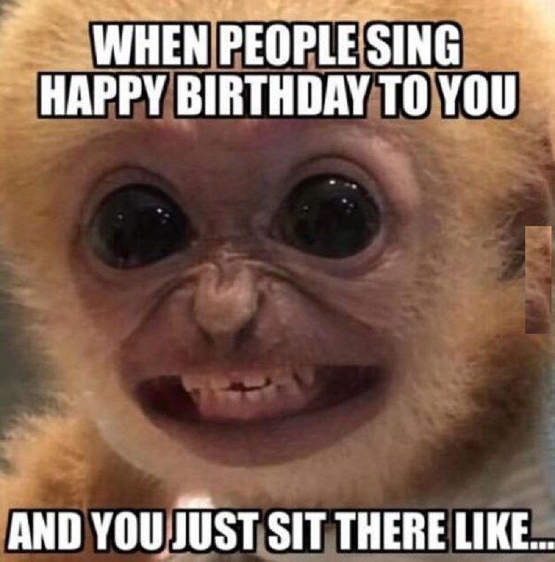 This image has an empty alt attribute; its file name is common-funny-birthday-meme-for-friend.jpg