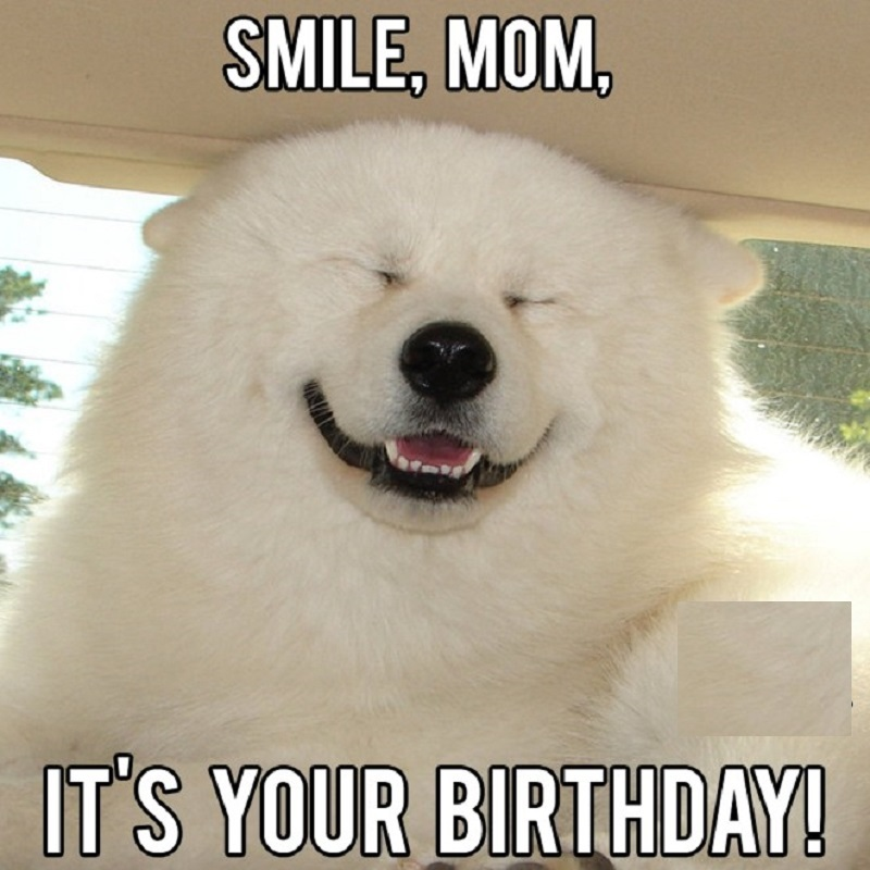 meme happy birthday mom