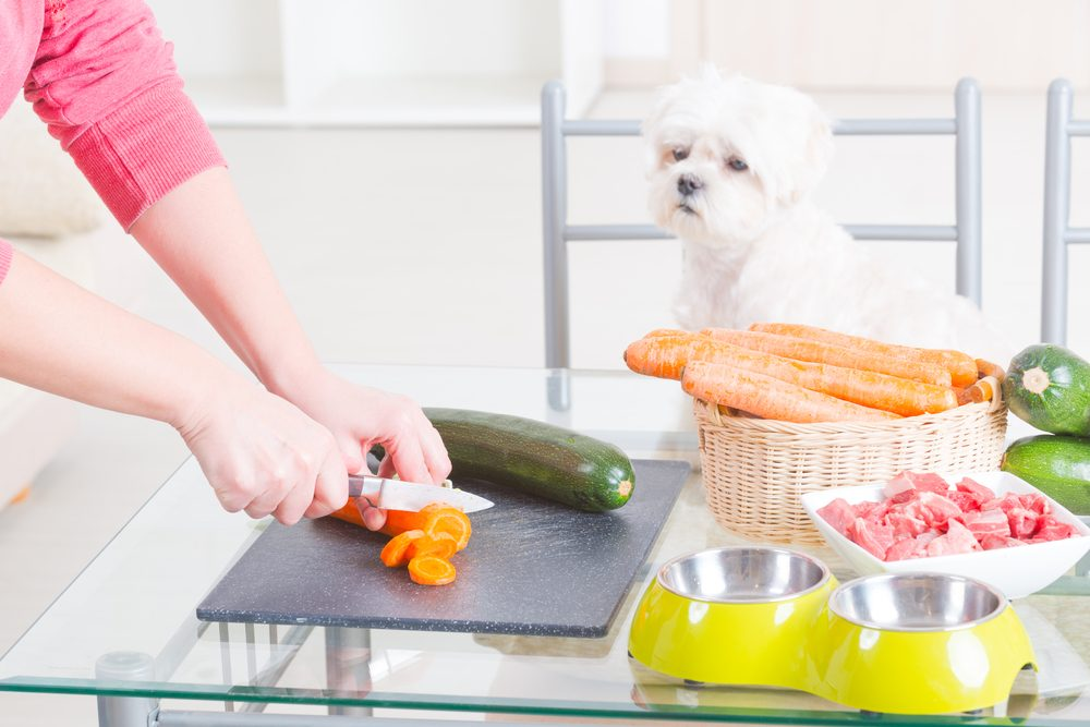 can dogs eat celery leaves
