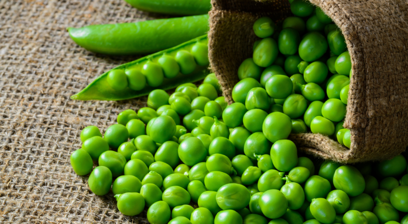 Can Dogs Eat Peas