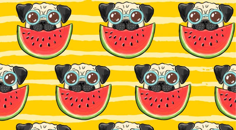 Can Dogs Have Watermelon — Health Benefits Of Watermelon For Dog