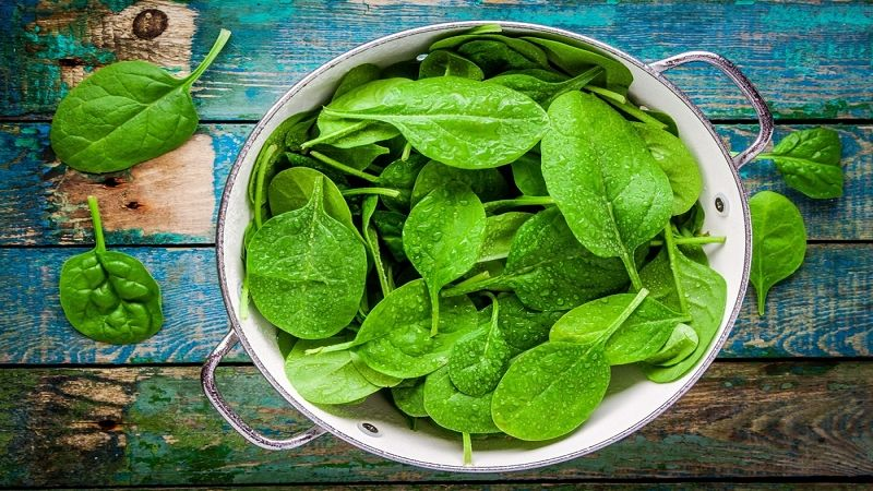 Is Spinach Healthy For Your Dog