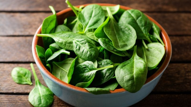 can you give spinach to your dog