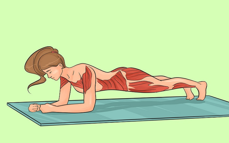 Forearm Plank. how to get a smaller waist