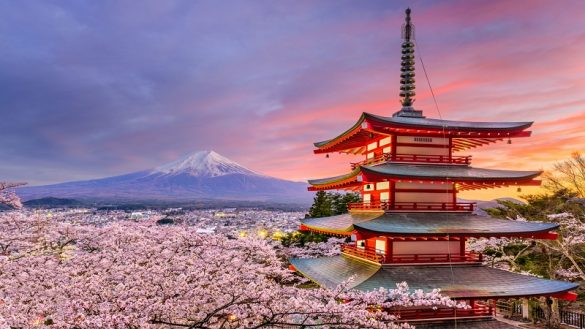 Best Time To Visit Japan - Season And Festivals You Must See