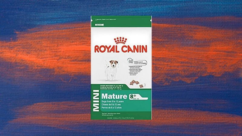 Royal Canin Size Health Nutrition Mini best dog food for small dogs