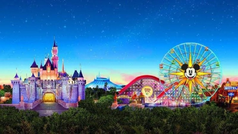 What Does A Disney Travel Agent Do