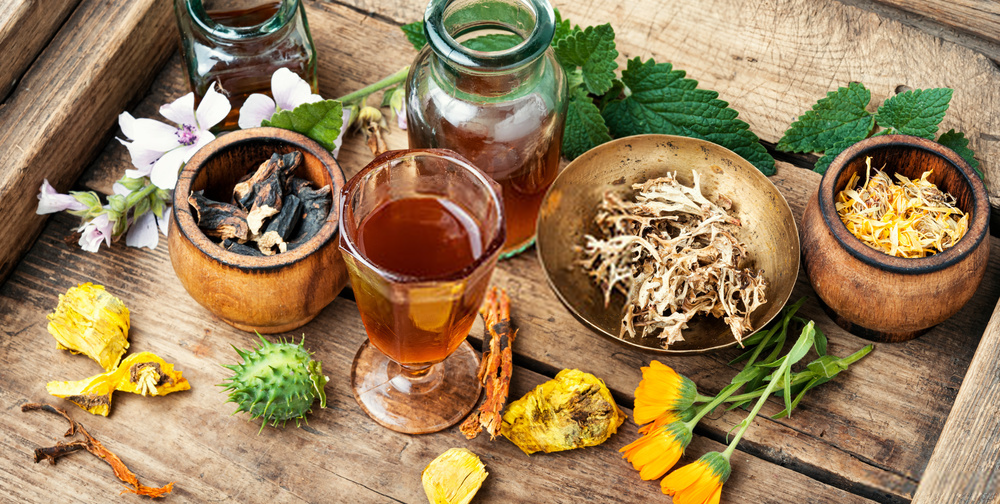 natural herbs for typhoid recovery