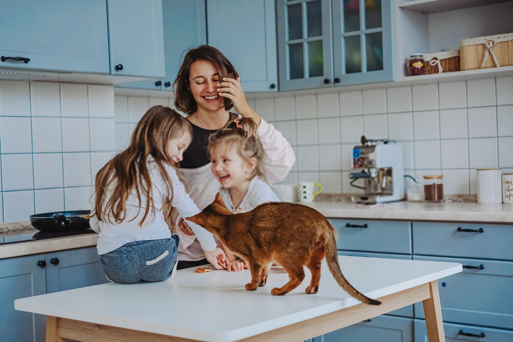 whole family training a cat